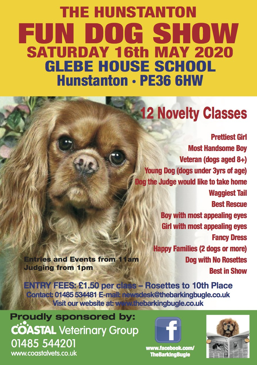 The Hunstanton Fun Dog Show, Glebe House School, Cromer Road, Hunstatnon , Norfolk, PE36 6HW | The best day out for dogs on the Norfolk coast. There are 12 fun classes to enter with rosettes up to 10th place in each class – with Best in Show and Reserve BIS Trophies. | dog show, dogs