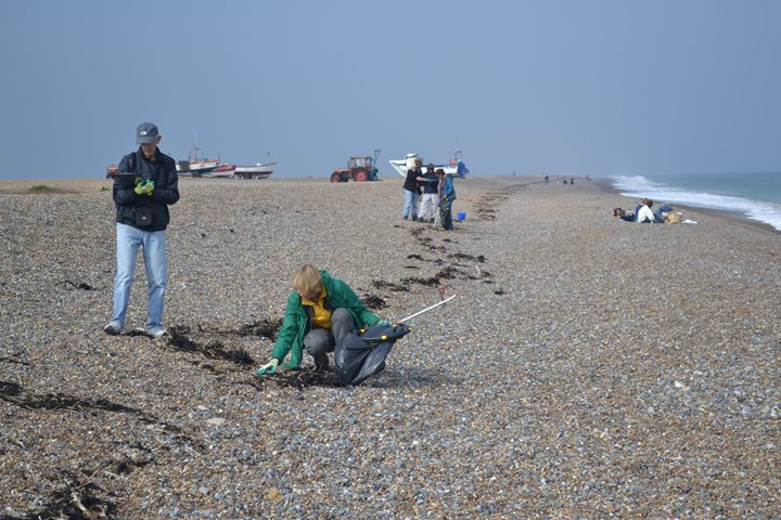 Cley Beach Clean, Norfolk Wildlife Trust Cley Marshes, Coast Road, Cley, Norfolk, NR25 7SA | Help us to clean up our shore to benefit coastal wildlife. | Wildlife, marine, conservation