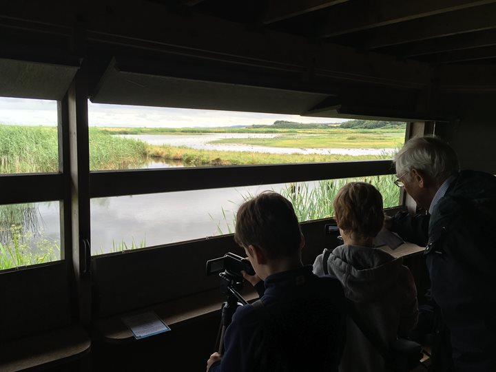 Capturing Cley - Family Event, Norfolk Wildlife Trust Cley Marshes, Coast Road, Cley, Norfolk, NR25 7SA | Explore and film exciting coastal wildlife at Cley using handheld cameras. Then watch your films on the big screen in our education centre | Birds, guide, nature