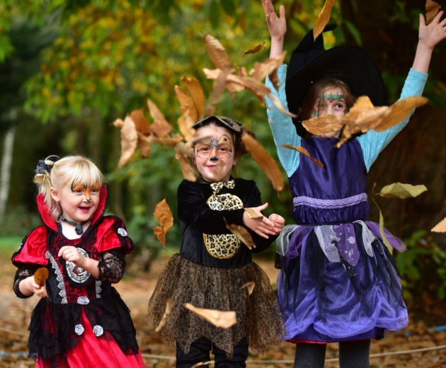Witches & Wizards - Autumn at the Hall | Discover the magic of Autumn through exploring the ancient woodland of Holt Hall with children's workshops available throughout the day. - Dalegate Market | Shopping & Café, Burnham Deepdale, North Norfolk Coast, England, UK