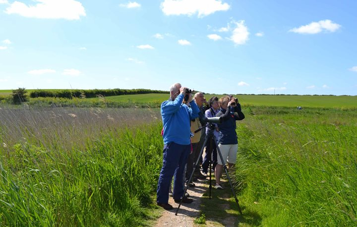 Circuit of Cley, Norfolk Wildlife Trust Cley Marshes, Coast Road, Cley, Norfolk, NR25 7SA | A guided circuit walk around the reserve and along the shingle ridg | guided walk, family friendly, nature