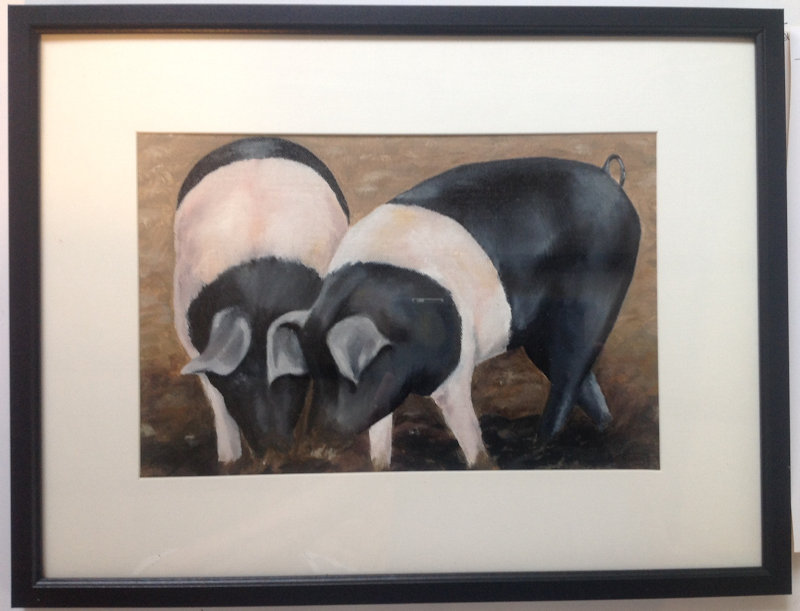 The Other Stuff! by Barbara King, Ringstead Village Hall, High Street, Ringstead, Norfolk, PE36 5JU | An exhibition of paintings by Barbara King | cows, sheep, pigs, fireworks, plants, hedgerows, shadows, reflections, folk, dance, morris, boats, vegetables, fruit, flowers,