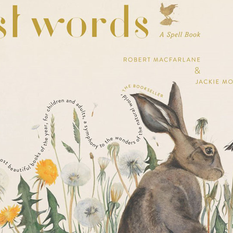 Wildlife Words and Wild Art, NWT Hickling Broad Stubb Road Hickling NR12 0BW  | Family event | Nature, outdoors, art, poetry, Norfolk Broads