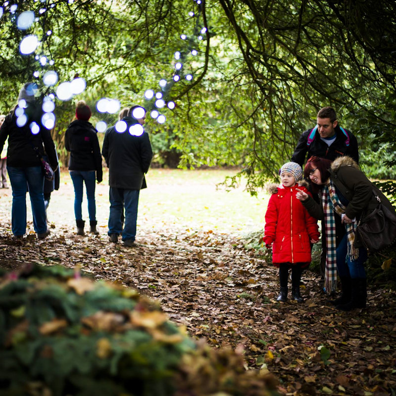 Enchanted Felbrigg, Felbrigg, Norwich, Norfolk, NR11 8PR | Join the National Trust for an outdoor seasonal experience for all the family to enjoy. | national, trust, felbrigg, hall, enchanted
