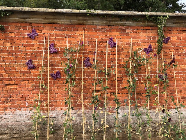 Flight for Youth at Holkham, Walled Garden, Holkham Hall, Holkham, North Norfolk Coast | Flight For Youth is the fundraising campaign during the 25th anniversary of the Benjamin Foundation to support their work. It will transform the Walled Garden into a kaleidoscope of butterflies to provide a unique experience for visitors. | butterfly, benjamin, foundation, flight, for, youth, holkham, hall, north norfolk coast