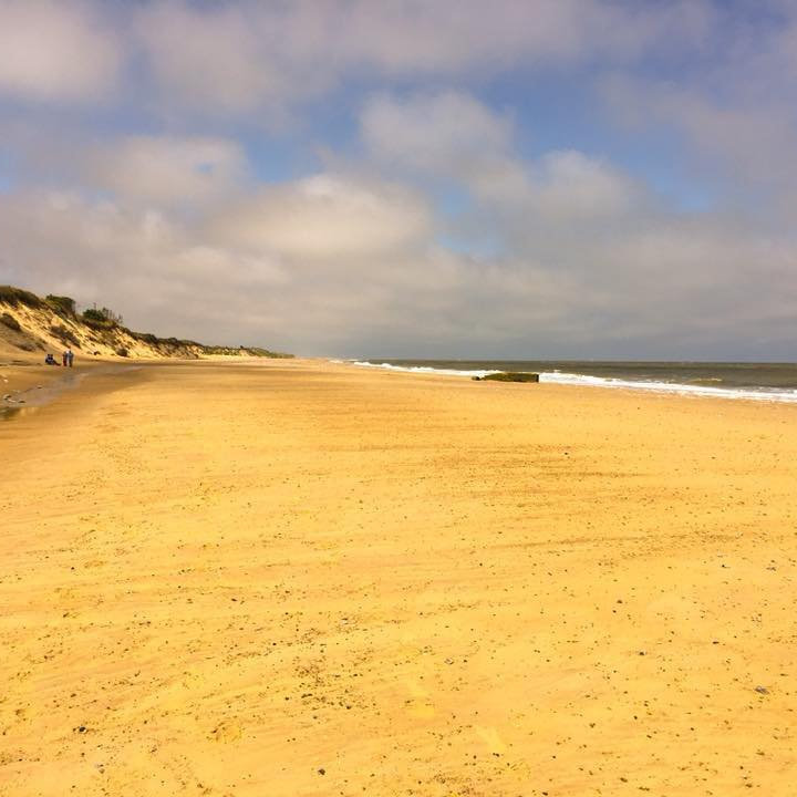 Great British Beach Clean Up, Hemsby Beach, Norfolk | Come along and help clear Hemsby Beach of waste plastic products left behind by day trippers and tourists.  | Hemsby Beach, Norfolk, Great British Beach Clean Up