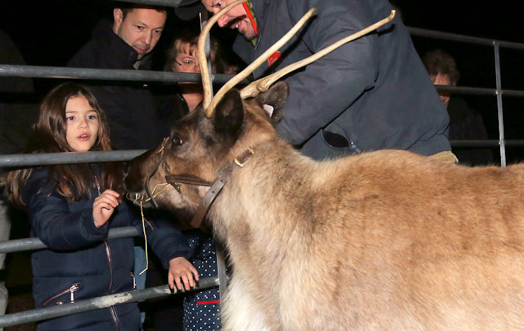 Meet the Reindeer | To get into the Christmas spirit, join us at The Chequers Inn on Friday 21st December between 5.30pm and 9.30pm for a family friendly evening. - Dalegate Market | Shopping & Café, Burnham Deepdale, North Norfolk Coast, England, UK