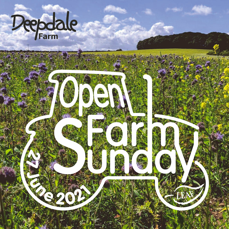 Open Farm Sunday | Come and join us at Deepdale Farm on Sunday 27th June for Open Farm Sunday. You are welcome to visit us for the morning or afternoon, to learn about the farm, meet the team, meet some of our partners, and join us for a walk around parts ... | Deepdale Farm, Burnham Deepdale, Norfolk, PE31 8DD