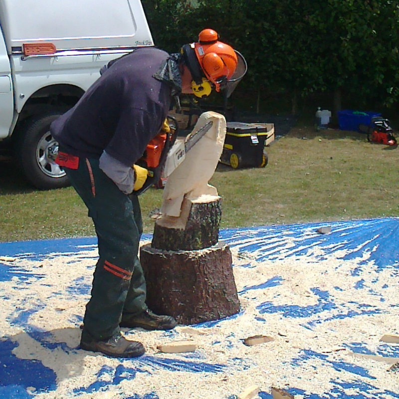 Paul & Cam Kelly Chainsawcarving - Chainsawcarving demonstrations throughout the weekend.