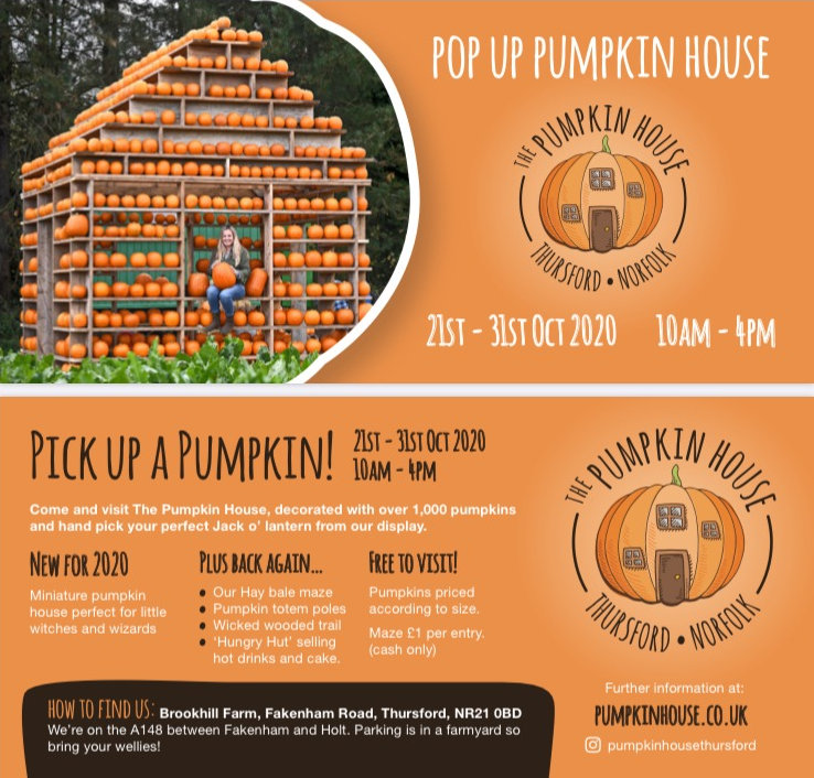 The Pumpkin House, Brookhill Farm, Fakenham Road, Thursford , Norfolk, NR21 0BD | Come and choose your pumpkin from the Pumpkin House shelves. Decorated with over 1,000 pumpkins you are sure to find your perfect Jack O Lantern. | Pumpkins Halloween half term