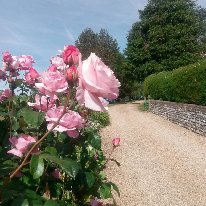 Ringstead Open Gardens, Village of Ringstead, Near Hunstanton | Gardens will be open from 11am to 5pm. Flower Festival in Church Sunday & Monday from 10am to 5pm and Ringstead Artists Exhibition in Village Hall on Saturday and Sunday from 10am to 5pm | Open Gardens