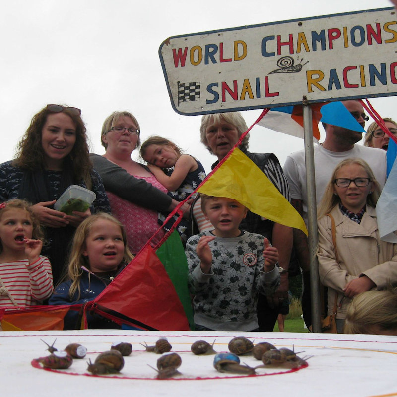World Snail Racing Championships | More than 200 snails slug it out every year in the World Snail Racing Championships held at Congham, in Norfolk.  Why not come along as a spectator or even as a trainer and enter your own snail! - Dalegate Market | Shopping & Café, Burnham Deepdale, North Norfolk Coast, England, UK