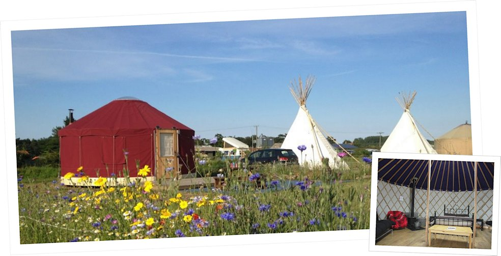 Stables Special Offer , Deepdale Backpackers and Camping | Book Your 2 night Pre-Christmas Getaway and we'll add a third night FREE! | stables,Glamping, Tipi, Yurt, Shepherds hut, offers,familys,discounted rates,